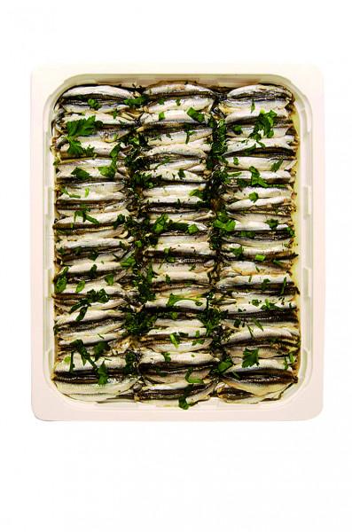 Sardellen Filets Natur 1,3 kg